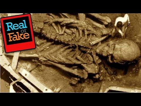 примера построения останки скелета 12 метров селе Никольское