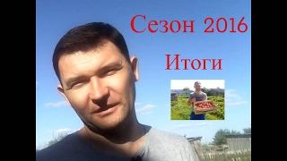 Итоги и закрытие / Cезон 2016 / Выращивание клубники