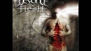 Watch Beyond The Flesh Scattered Thoughts video