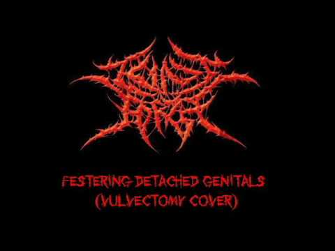 Cunt Torch - Festering Detached Genitals (Vulvectomy Cover)