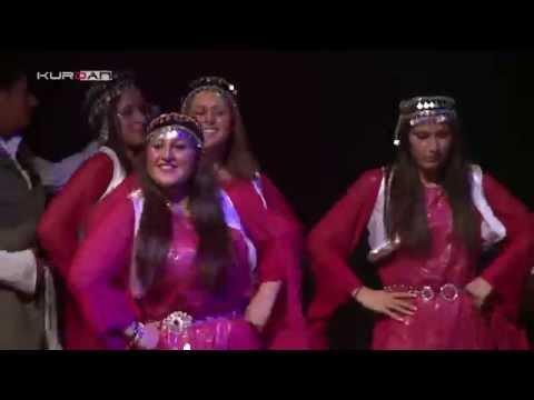 Kurdish traditional Dance / Copenhagen part 5