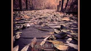 House of the Maker - The Autumnal End [Full Length Dark Ambient Album]