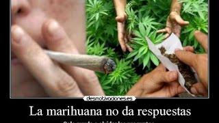 Cortemos con tanta dulzura con la Marihuana: Psicosis, esquizofrenia y cambios del carácter
