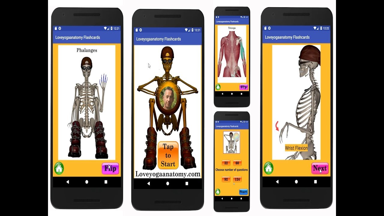 Learn Anatomy Flashcard App - YouTube