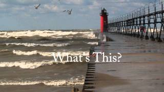 Gulls and Gales:   A Fish Story