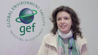 Interview with Luciane Moessa da Sousa. Managing Partner - SIS's