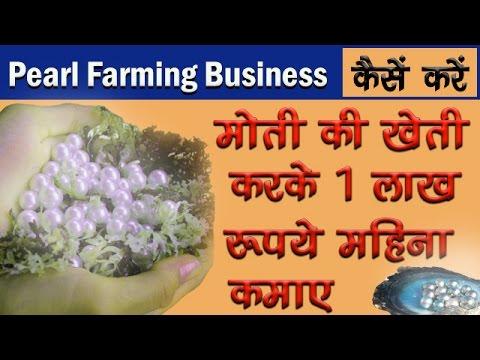 Moti ke kheti ki Jankari || मोती की खेती करके 1 लाख रूपये महिना कमाए ||