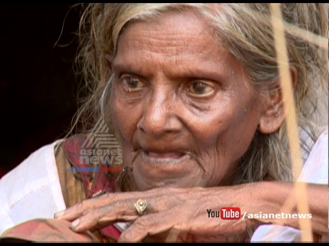 Asianet News Impact: Anandalekshmi will be shifted to safe shelter