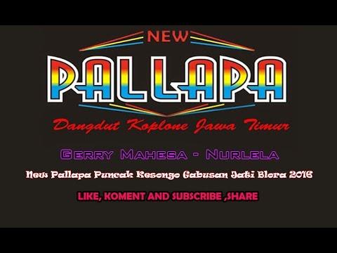 New Pallapa - Nurlela (Gerry Mahesa)