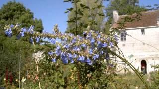 Les Petits Jardins de Beaulieu-les-Loches