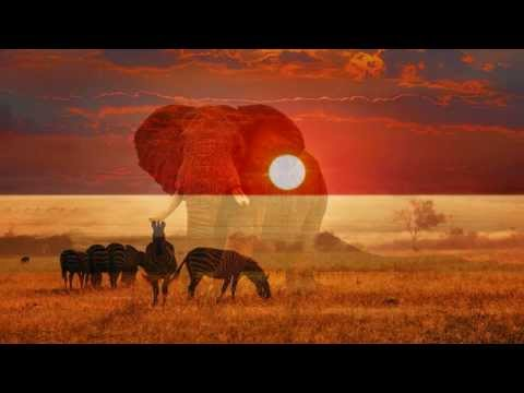 Africa By Toto With Lyrics