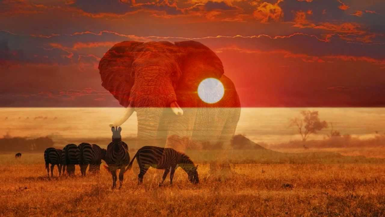 Africa By Toto With Lyrics YouTube