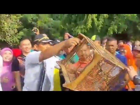 Pelepasan Satwa Burung Di taman Hutan Kota Oleh Walikota Bekasi Dr. Rahmat Effendi Mp3