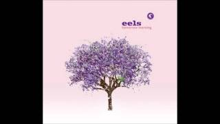 Watch Eels Im A Hummingbird video