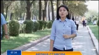 Замана: Международный день грамотности