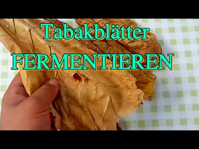 Selber bauen tabakschneider Drempelschrank selber