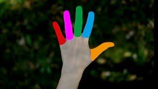 Os tornem que que com pretos o os dedos faz anéis