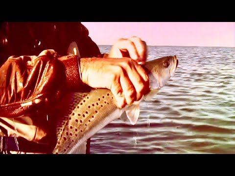The Cajun Bahamas - Louisiana - Sportsman TV - Full Episode