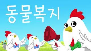 [참프레] 홍보 영상 롯데마트 - Short (모션그래…