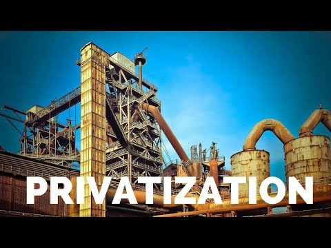 Privatization (Hindi) B.COM/M.COM, NET/JRF