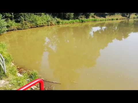 fkk campe orgie video