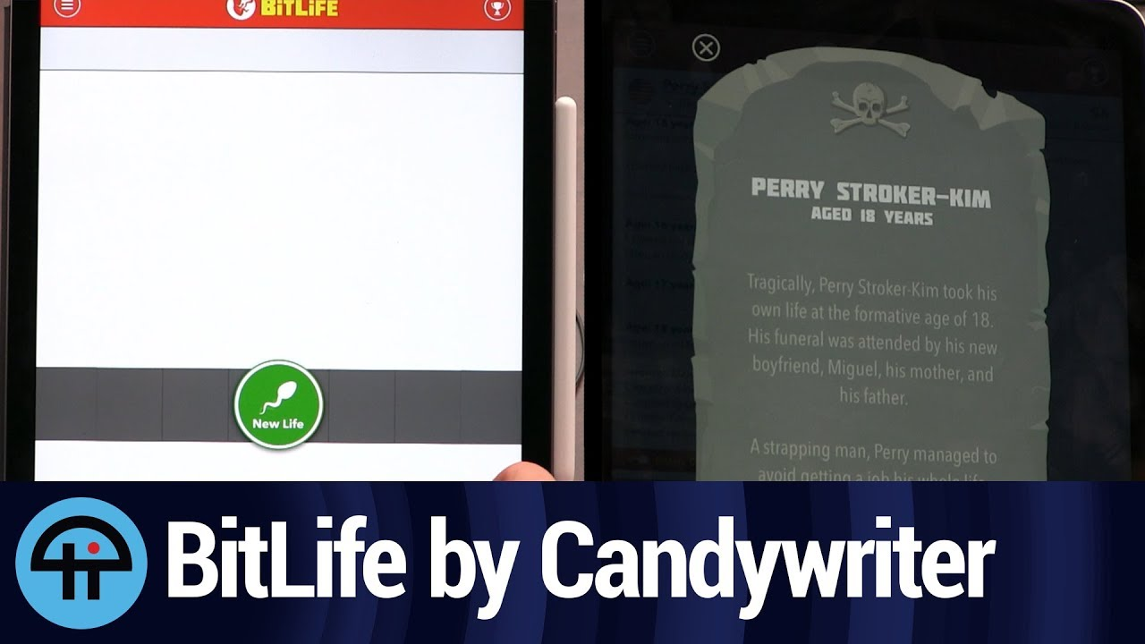 BitLife Life Simulator Review
