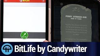 BitLife Life Simulator Review