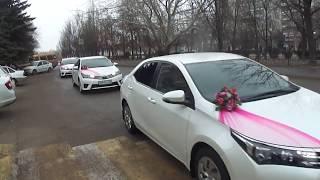 КОРТЕЖ из ПЯТИДЕСЯТИ ТОЙОТ. Свадебный кортеж Волгоград авто на свадьбу украшения для свадебных машин