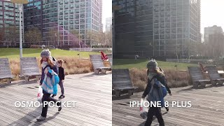4K 60fps - DJI Osmo Pocket vs GoPro Hero 7 Black vs iPhone 8 Plus