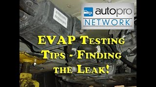 The Trainer #70 - EVAP Testing Tips