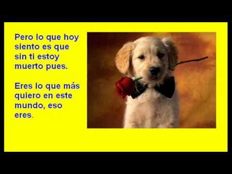 Eres   Con  Subtitulos  Con Letras  Karaoke With Lyrics Baladas  Love