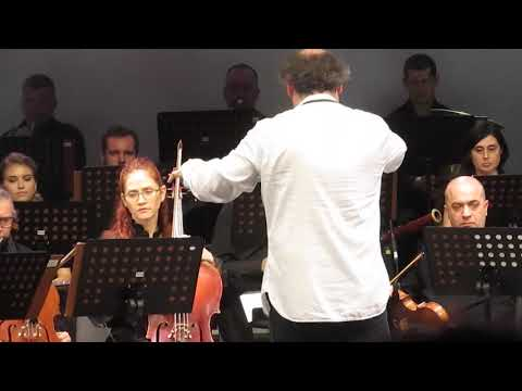 MVI 7653  Симфония N.9 «Линцская» в четырех частях. Композитор Антон Лубченко. Первая часть