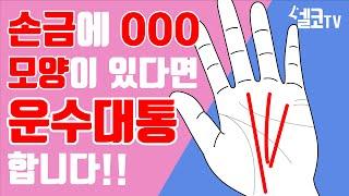 [탐나는 일상] [접시도사] 나의 운이 궁금하다면 지금 당장 손을 펴보세요! (이벤트있음)
