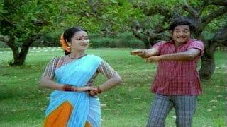 Kaani Sari Video Song || Eenadu Movie || Krishna,Radhika,Rao Gopal Rao