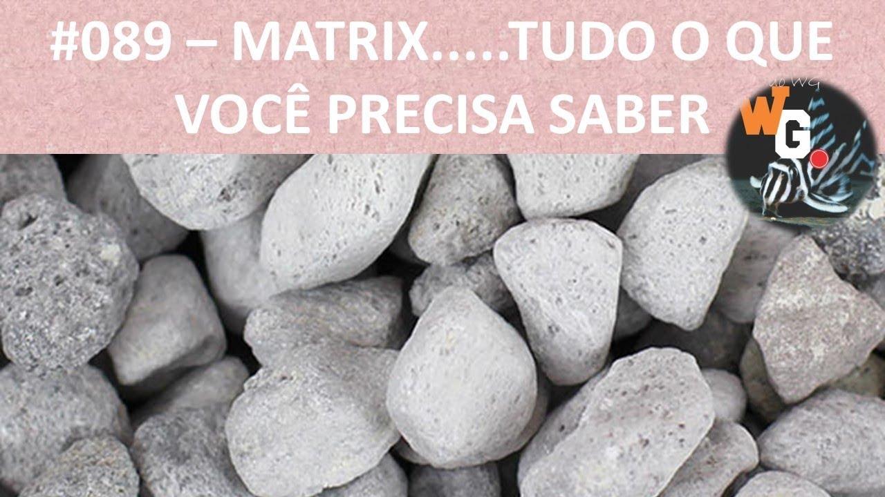 MATRIX - Tudo o que você precisa saber [Roberto Ramberger] - #089
