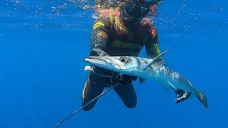 Spearfishing | Τhe Gulf of Corinth - Ψαροντούφεκο Στον Κορινθιακό κόλπο  ✅
