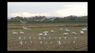 白鳥の歌が聴こえますか 武山あきよ カラオケ マイセレクション 白鳥 五泉市...