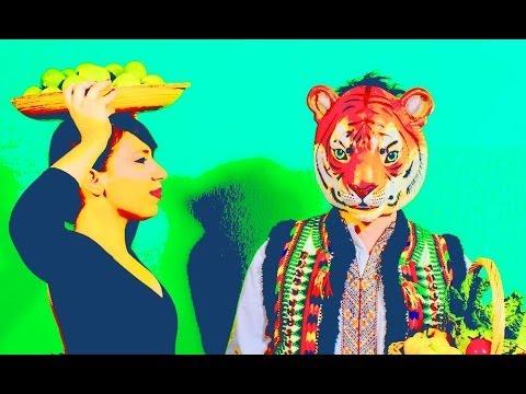 Banda Magda - Sabiá - Kickstarter Campaign Promo Video