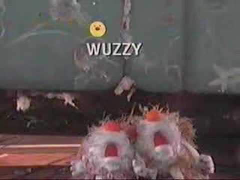 The Fuzzy And Wuzzy Song YouTube