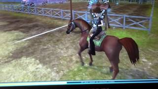 Star stable achat du new pur sang arabe