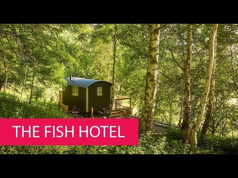 THE FISH HOTEL - UNITED KINGDOM, COTSWOLDS