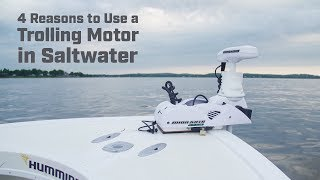 4 Reasons to Use a Trolling Motor in Saltwater