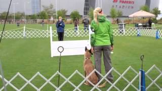 Phendi Akc Obedience Trials 2011- Tucson Dog Training