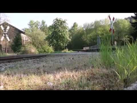 Sonderzug  zum Stahlwerk in Georgsmarienhütte 25.04.2014