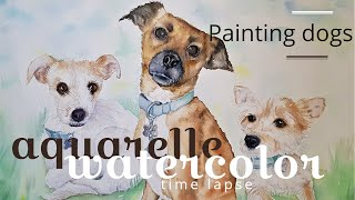 Dogs WATERCOLOR timelapse / Chiens à l'AQUARELLE