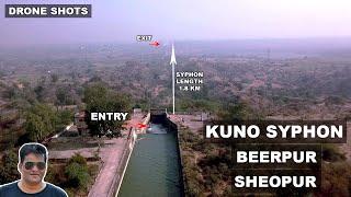 Kuno Syphon Beerpur sheopur || Kuno siphon || Kuno river || Kuno palpur wild life century|| apsvlogs