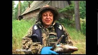Рыбалка видео часть 2. Таежные озера Томской области