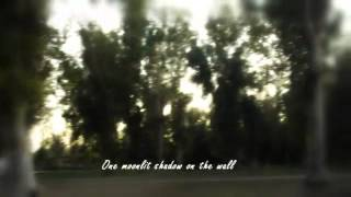 Opeth-Patterns in the ivy II (with lyrics)