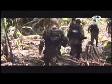 Paramilitares en Colombia: La Historia de los Hermanos Castaño