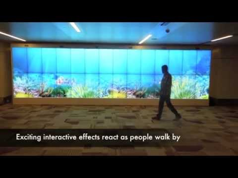 Interactive Video Wall Welcomes You to Delhi Airport